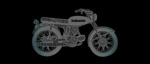 indosole-2013