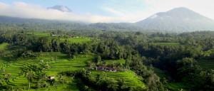 aerial Jati Luiwih